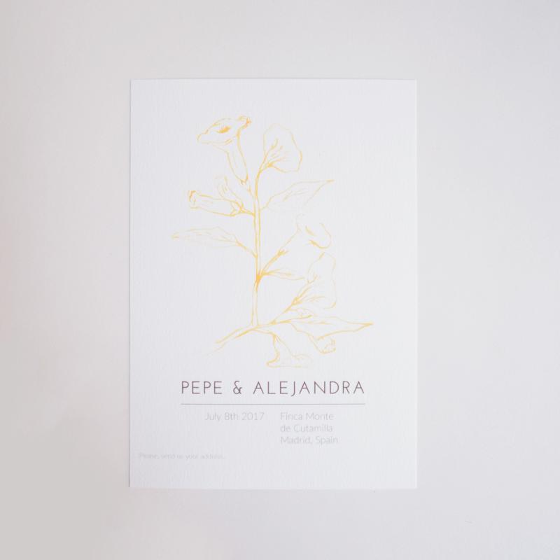 P + A Ilustración y diseño de suite de boda por Saveria Casaús Carchella